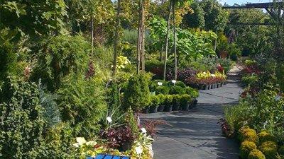 Centrum ogrodniczne - wszystko dla ogrodu Białystok
