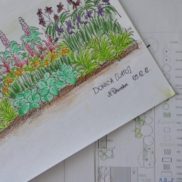 Projektowanie ogrodów Białystok szkic donicy