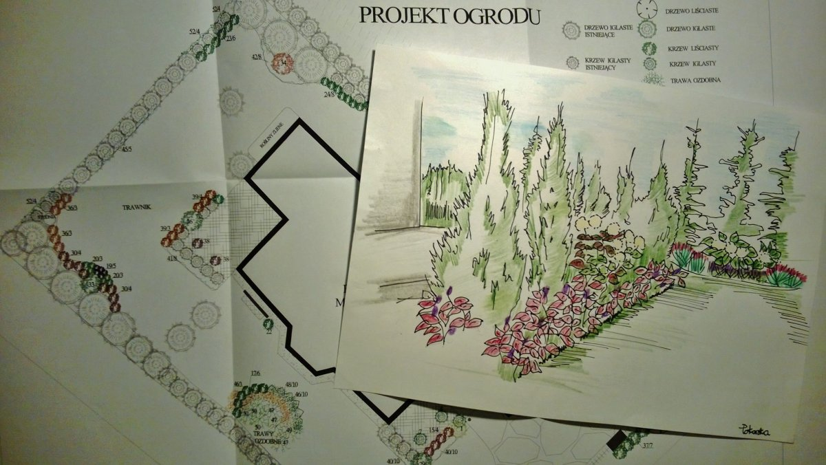 Projekt Ogrodu Rysunek