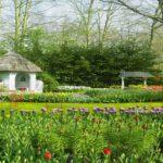 Zakładanie trawników białystok