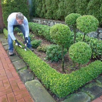 Projektowanie ogrodów w Białymstoku