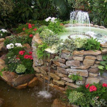 Oczko wodne w ogrodzie w Białymstoku
